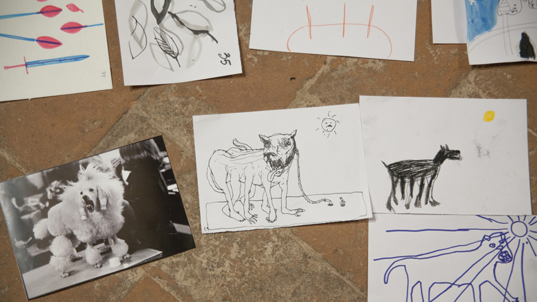 Pratiche Woodoo disegni vari