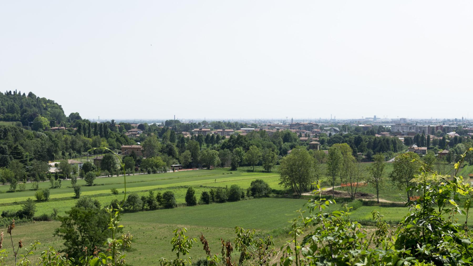 Panorama verde Dirama